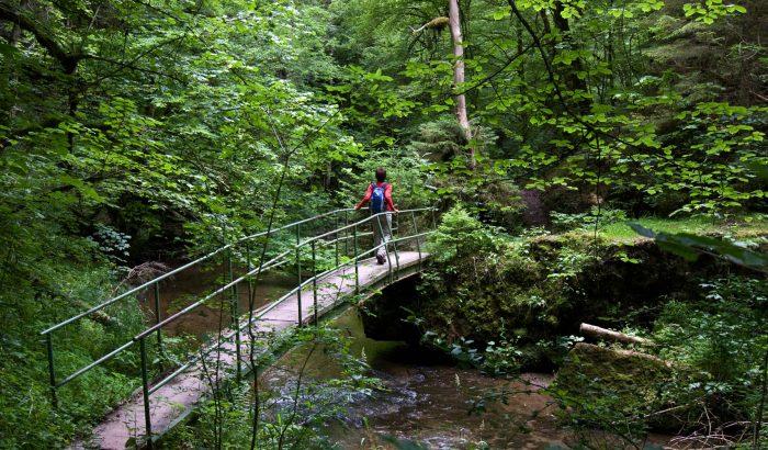 Bräunlingen - Wandern