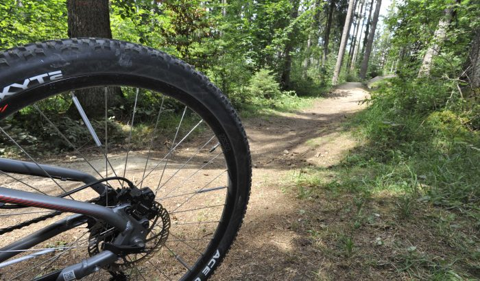 Kirnberg Trail